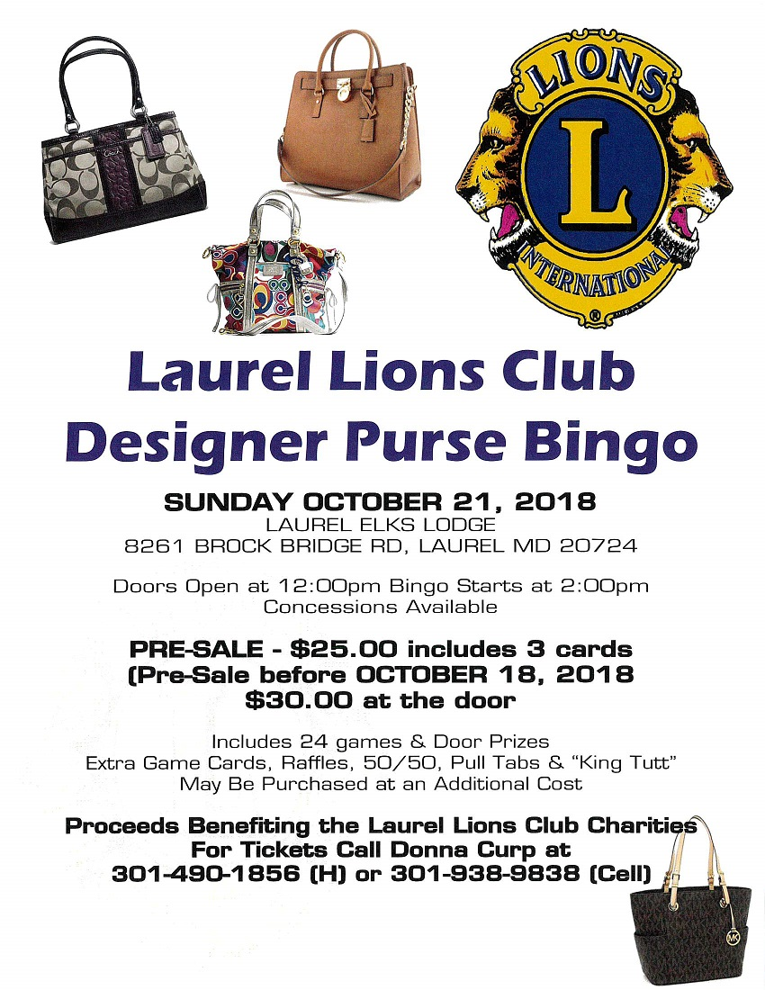lions_purse_bingo.jpg